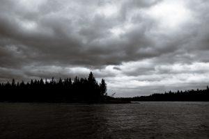 moose river : ontario : canada : 2006