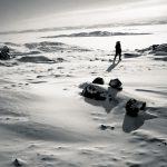 laird peninsula : nunavut : canada : 2008