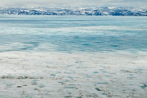 frobisher bay : nunavut : canada : 2008