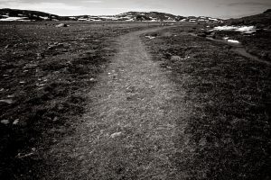 sylvia grinnell park : nunavut : canada : 2008