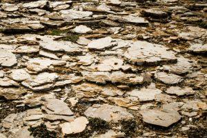 katannilik park : nunavut : canada : 2008
