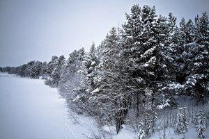 inari : finland : 2008
