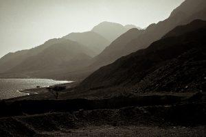 sinai mountains : egypt : 2010
