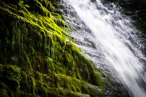 caerfarnell falls : wales : united kingdom : 2016